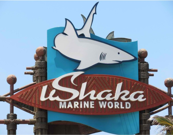 UShaka Marine World - Heating in terrariums by Speedheat Floor Heating